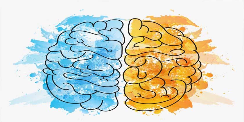 6 Principios básicos del neuromarketing