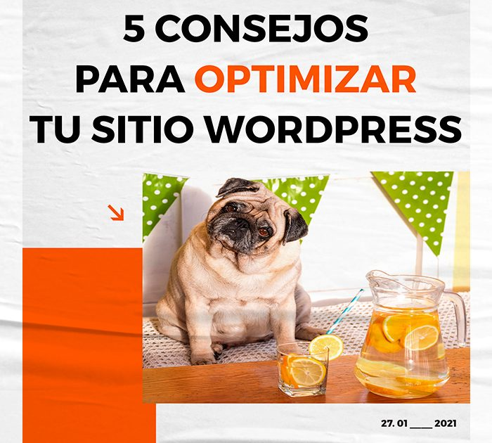 5 consejos para optimizar tu sitio Wordpress
